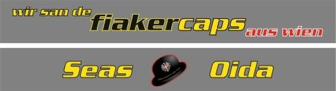 Fiakercaps Strickschal 2015